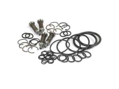 Hydraulic Pump Valve Chamber Repair Kit for Massey Ferguson TO35, 135, 285 and More