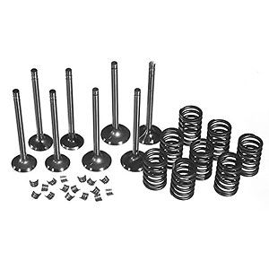 Valve Overhaul Kit for Ford/New Holland Models 7000, 7600, 7710 and More